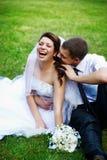 Noiva e noivo alegres Fotografia de Stock Royalty Free