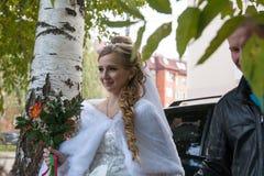 Noiva e noivo bonitos fotos de stock