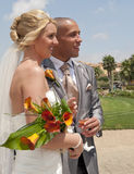 Noiva e noivo na luz do sol Imagem de Stock