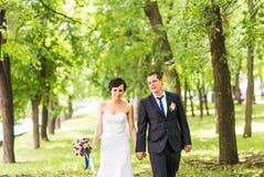 Noiva e noivo no parque fotos de stock