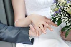 Noiva e noivo que prendem cada outro mãos Fotos de Stock Royalty Free