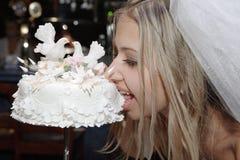 Noiva e torta do casamento Imagens de Stock