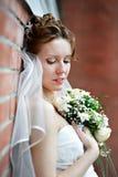Noiva elegante da parede de tijolo na caminhada do casamento fotos de stock royalty free