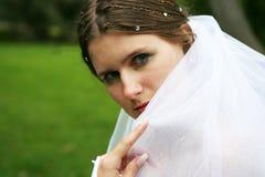 A noiva em um vestido branco Fotografia de Stock