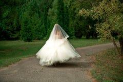 A noiva em um vestido de casamento pródigo Fotografia de Stock