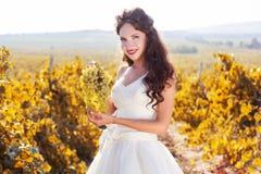 Noiva em um vinhedo, outono Foto de Stock