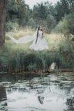 Noiva inoperante assustador na cena de Dia das Bruxas da floresta imagem de stock royalty free