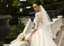A noiva lindo com cabelo escuro veste o vestido de casamento elegante Imagem de Stock Royalty Free