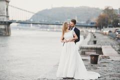 Noiva loura feliz à moda elegante e noivo lindo no fundo de um rio bonito nas montanhas foto de stock royalty free