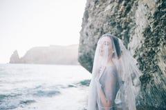 Noiva moreno bonita da menina em um vestido cinzento do laço e do tule, coberto sua cara com um véu, mão no peito, perfil, horizo foto de stock
