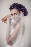 Noiva moreno bonita que guardara o véu sobre sua cara de sorriso Fotografia de Stock