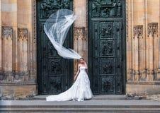 Noiva na entrada Fotos de Stock
