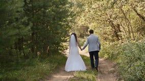 Noiva no vestido branco e noivo na floresta andam unidas mantendo as mãos feliz junto Dia do casamento video estoque