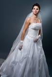 Noiva no vestido de casamento Imagem de Stock