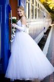 Noiva nova bonita Fotografia de Stock Royalty Free