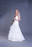 Noiva nova no vestido de casamento Foto de Stock Royalty Free