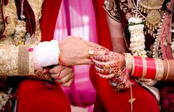 Noiva que põe uma aliança de casamento sobre o dedo do ` s do noivo fotos de stock
