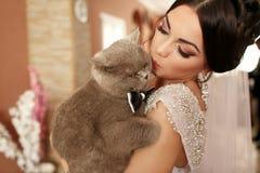 A noiva smilling mantém seu gato Foto de Stock