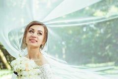 Noiva sob o véu Fotografia de Stock Royalty Free