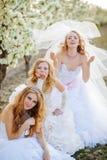Noivas Fotografia de Stock Royalty Free