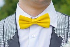 Noivo amarelo da borboleta Fotos de Stock Royalty Free