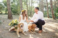 Noivo com a noiva e o cão Foto de Stock