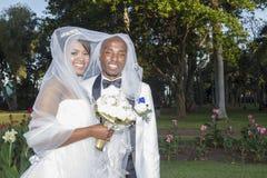 Noivo da noiva do casamento Imagem de Stock Royalty Free