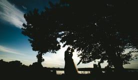 Noivo da noiva que está no parque fotografia de stock