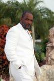 Noivo do americano africano fotos de stock royalty free