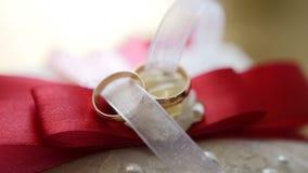 Noivo do laço e alianças de casamento - acessórios vídeos de arquivo