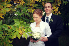 Noivo e noiva Imagem de Stock