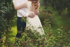 Noivo e noiva em um véu que está e que guarda as mãos Imagens de Stock