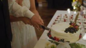 Noivo e noiva que cortam o bolo vídeos de arquivo