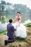 Noivo em seus joelhos antes da noiva fotografia de stock royalty free