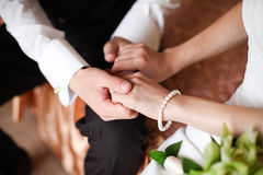 Noivo na camisa branca e na noiva que guardam as mãos Fotos de Stock Royalty Free