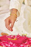 Noivo Pooja de execução da noiva para o mangala Sutra Imagem de Stock