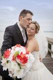Noivo que beija a noiva Fotografia de Stock Royalty Free