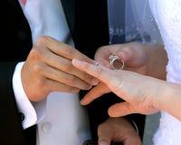 Noivo que coloc o anel Fotografia de Stock