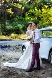 Noivos bonitos em equipamentos bonitos com um carro do casamento imagem de stock