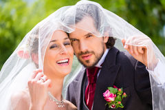 Noivos dos pares do casamento que escondem com véu Fotografia de Stock