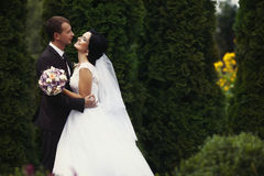 Noivos lindos delicados românticos no fundo do mo Foto de Stock Royalty Free