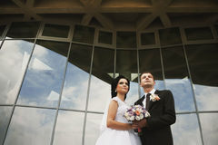 Noivos lindos delicados românticos no fundo do mo Fotografia de Stock Royalty Free