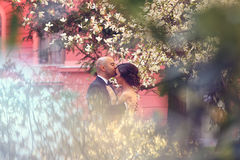 Noivos na primavera Fotos de Stock Royalty Free