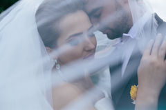 Noivos no casamento fotografia de stock royalty free