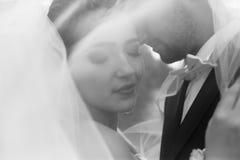 Noivos no casamento imagem de stock royalty free