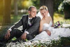 Noivos que abraçam e que olham nos olhos outro de um assento em uma grama verde Fotografia de Stock