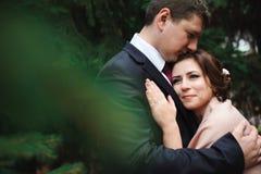 Noivos que abraçam em uma floresta na floresta do outono, caminhada do casamento imagem de stock royalty free