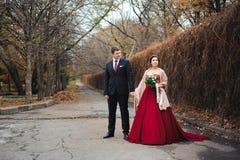 Noivos que abraçam em uma floresta na floresta do outono, caminhada do casamento fotografia de stock royalty free