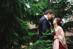 Noivos que abraçam em uma floresta na floresta do outono, caminhada do casamento imagens de stock