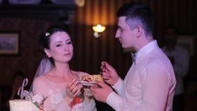 Noivos que comem o bolo de casamento vídeos de arquivo